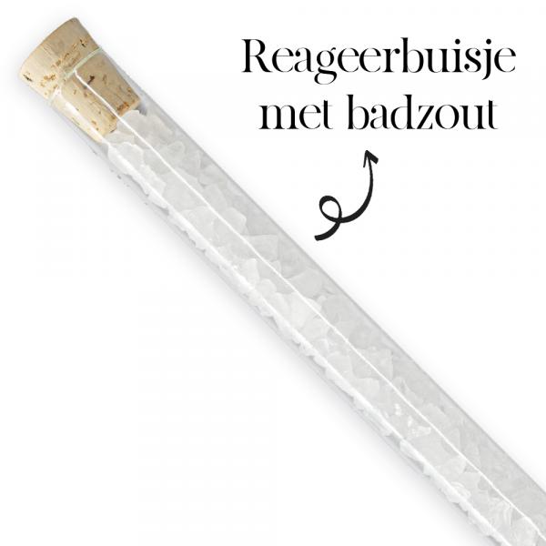 Buisje Badzout