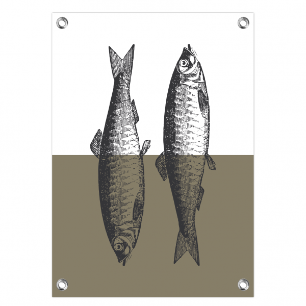 Tuinposter Vintage fish olijf
