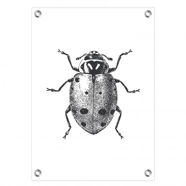 Tuinposter Vintage ladybug wit