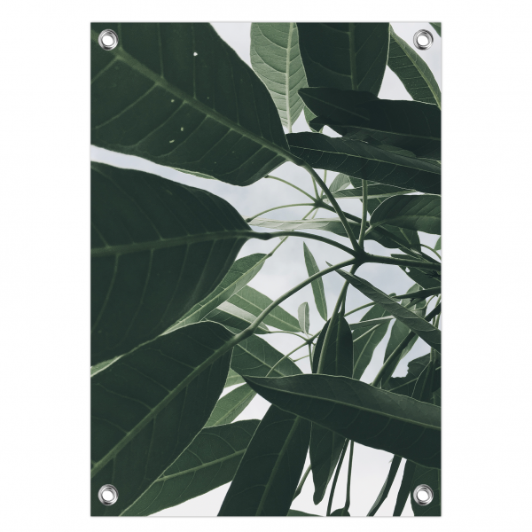 Tuinposter leaves
