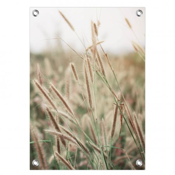 Tuinposter Grass