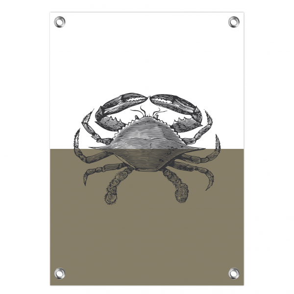 Tuinposter Vintage crab olijf